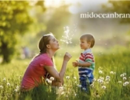 Mid Ocean Brands places compliance documents online