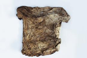 "06FS kompost shirt 03 Trigema - ""Waste is nourishment"""
