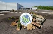 Halfar built an insect-friendly area